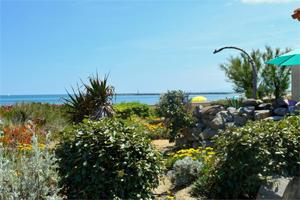 Vue de la pinède : location naturisme à Leucate