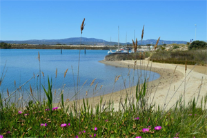 Vue de la plage : location vacances naturiste à Leucate
